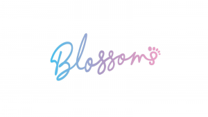 Blossoms Belfast